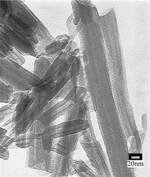 Halloysite nanotubes