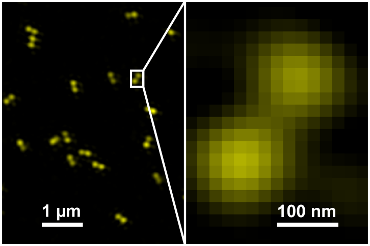 GATTA-SIM Nanoruler