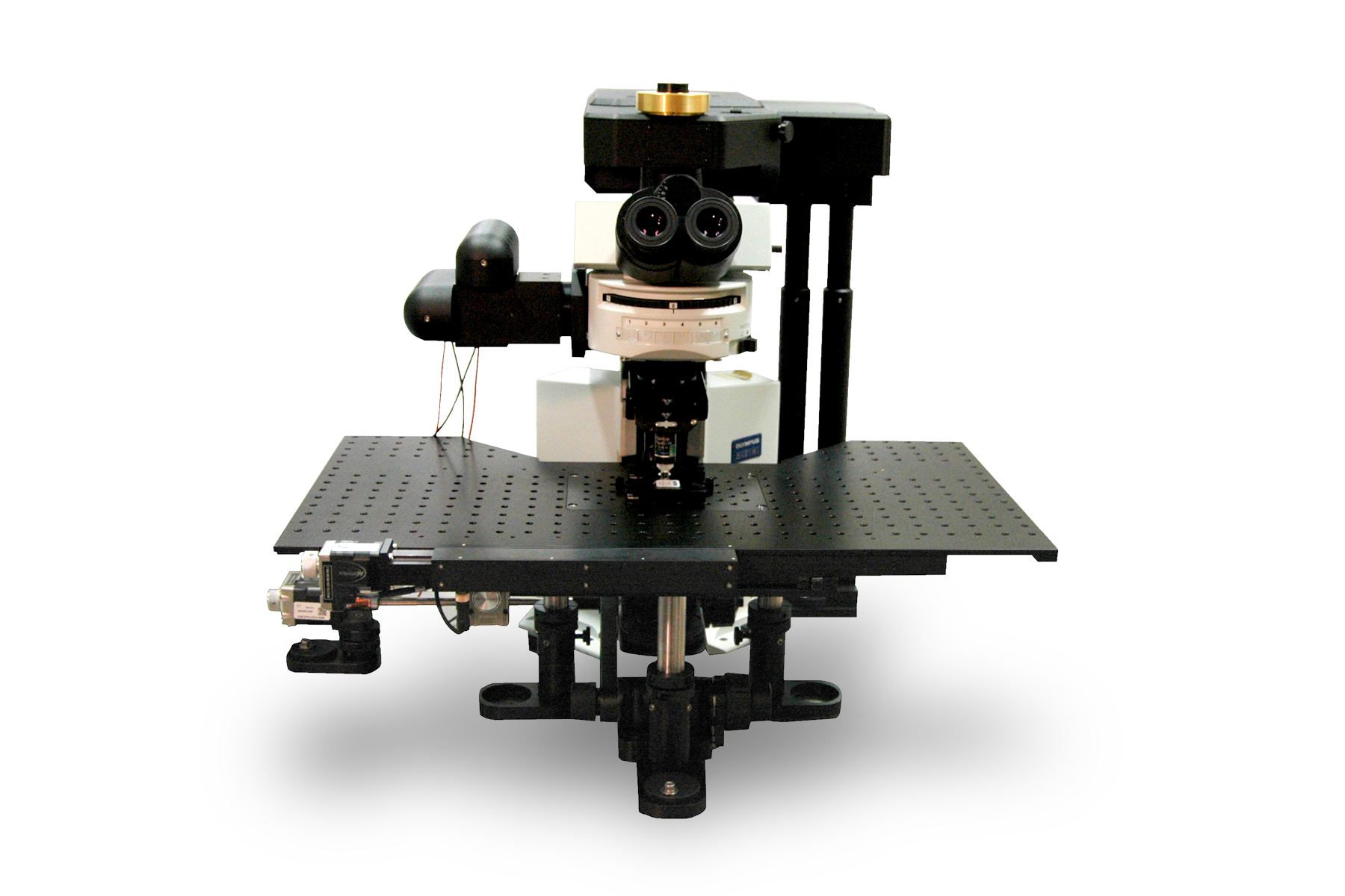 Ultima Multiphoton Imaging Systems