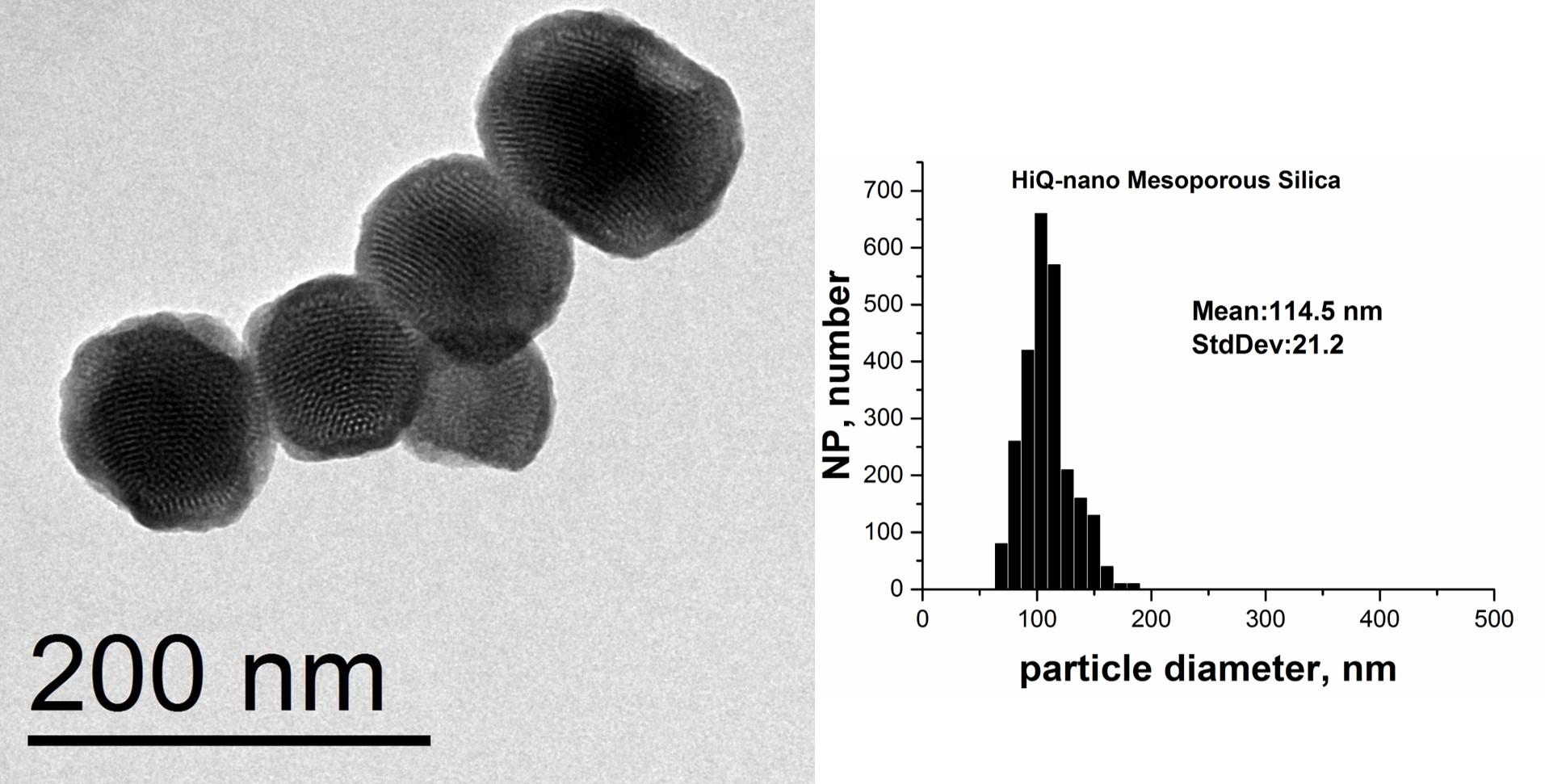 Mesoporous Silica Nanoparticles